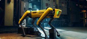 NCC adquiere a Spot el robot de Boston Dynamics